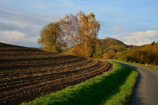 Arable, Ackerfurchen, Agriculture, Symmetry, Earth