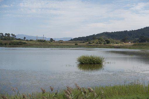 Calm, Lake, Loch, Marsh, Nature Reserve, Plain