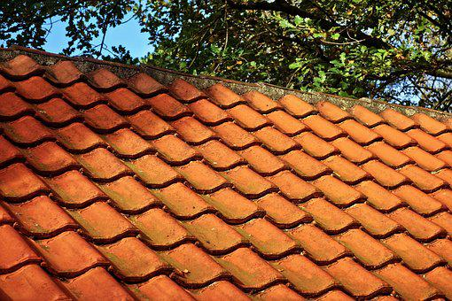 Roof, Tiles, Roof Tile, Roofing, Red Roof Tiles, Barn