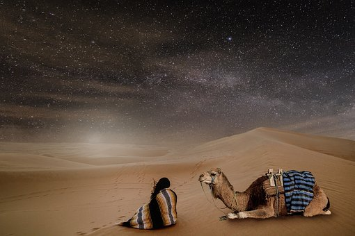 Desert, Night, Starry Sky, Person, Dromedary, Sand, Dry
