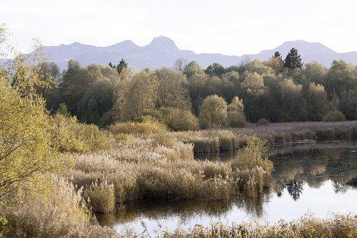 Autumn, Nature Reserve, Alpine, Wendelstein, Lake