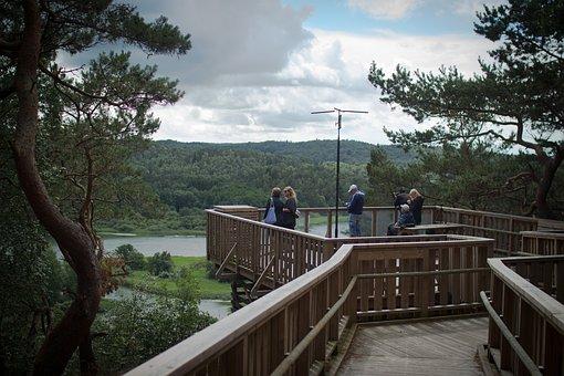 Kungälv, Views, Nature, Summer, Sweden, Beautifully