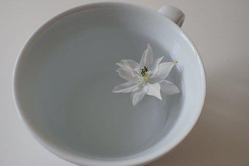 Cup, Blossom, Bloom, White, Coffee, Ceramic, Flower