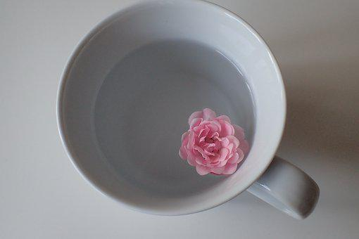 Cup, Pink, Food, Easter Egg, Easter, Hartgekocht