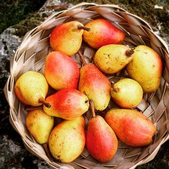 Pear, Autumn, Mature, Solar Light, Warm, Nature, Colors