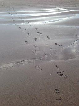 Footprints, Sand, Beach, Foot, Walk, Step, Barefoot