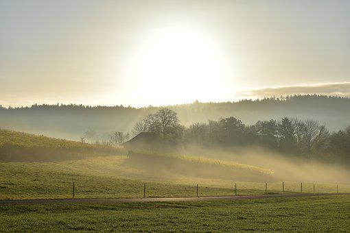 Landscape, Fog, Morning Sun, Mood, Sunrise, Sun, Nature