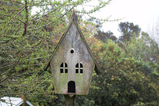 Old, Weathered, Birdhouse, Country, Rustic, Aged