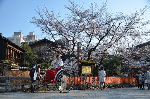 Japan, Kyoto, Sakura, Spring