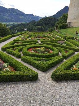 Garden, Topiary, Hedge, Outdoor, Gardening, Landscape