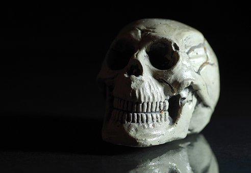 Skull, Death, Horror Movie, Dead, Memento Mori