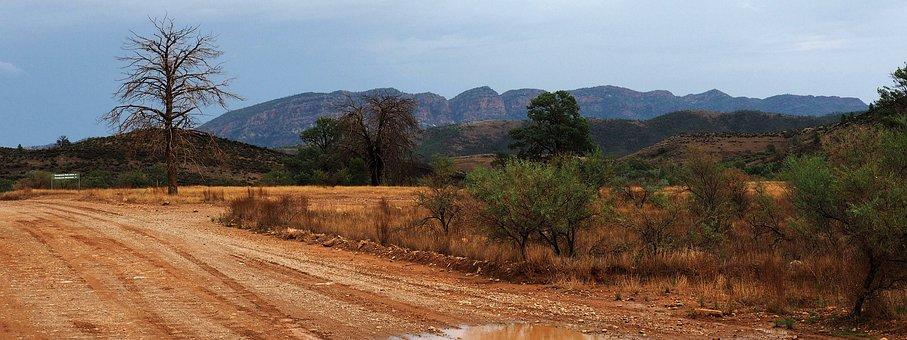 Outback Australia, Flinders Ranges, Remote, Dead Treas