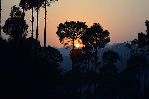 Sunset, Trees, Mountains, Murree, Pakistan, Landscape