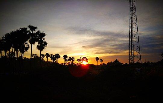 Skyly, Sunrise, Nature, Silhouette, Sunset, Tree