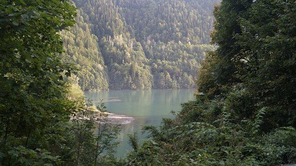 Abkhazia, Ritsa, Lake, Water, Forest, Thickets, Greens