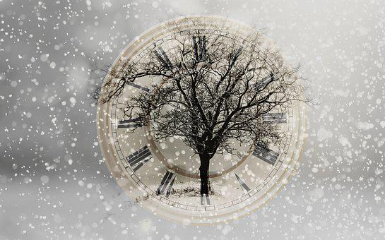 Snow, Snowfall, New Year's Day, New Year's Eve, Tree