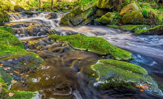 Stream, Autumn, Yorkshire, Valley Of Desolation