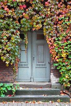 Input, Door, Oak, Ivy, Stone Stairway, Doors