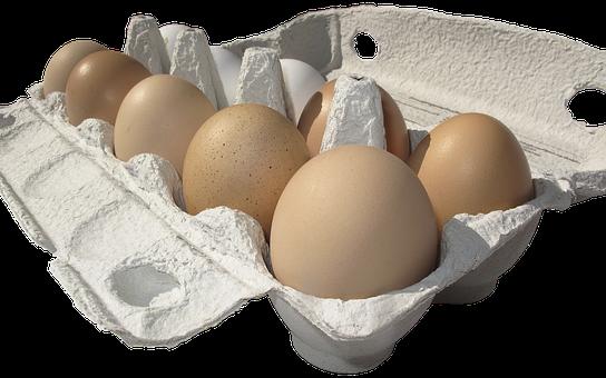 Egg, Hen's Egg, Egg Carton, Lots Of Eggs, Egg Packaging
