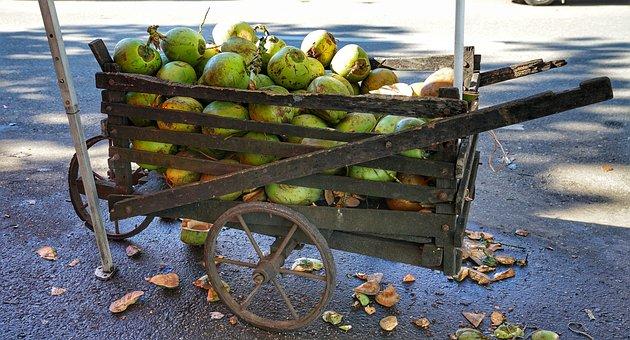 Cart, Wooden, Coconuts, Yangon, Myanmar, Burma, Burmese