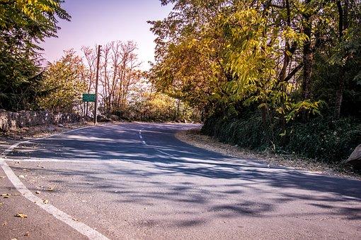 Road, Mountain, Autumn, Trees, Path