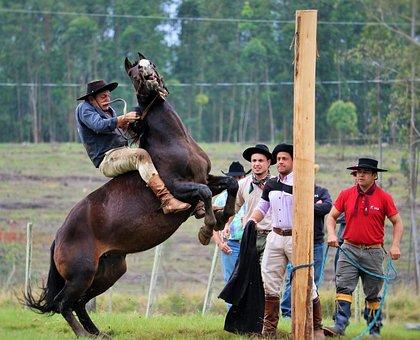 Gineteada, A Style Gaucho, To Ride Horses