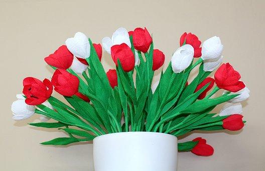 White - Red, Flowers, 11 Nov, Decoration