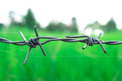 Barbed Wire, Countryside, Green, Thailand, Outdoor
