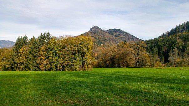 Frohnleiten, Autumn, Meadow, Laas, Nature, Forest