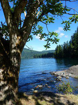 Cultus Lake, Water, Mountain, Landscape, Trees, Rocks