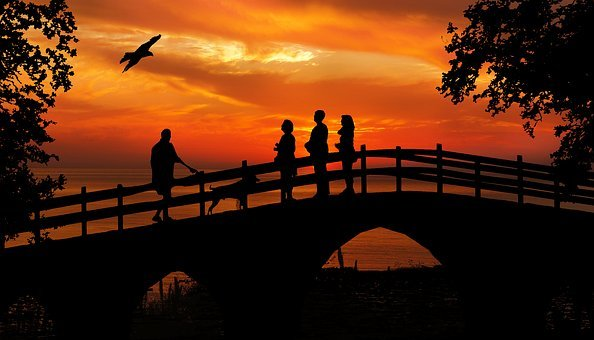 Sunset, People, Bird, Watching, Bridge, Silhouette