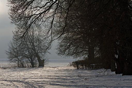Winter, Rügen, Baltic Sea, Place Lauterbach, Landscape