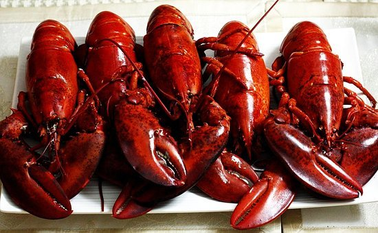 Lobsters, Dinner, Seafood, Food, Fresh, Delicious
