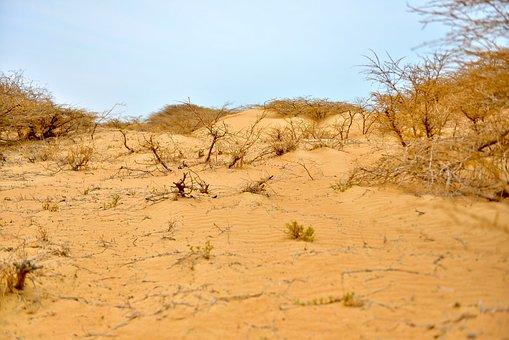 Desert, House, Landscape, Nature, Sky, Sand, Natural