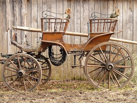 Coach, Horse Drawn Carriage, Wagon, Team, Old