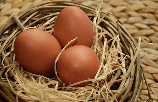 Egg, Brown Eggs, Of Course, Nest, Wood Wool, Hen's Egg
