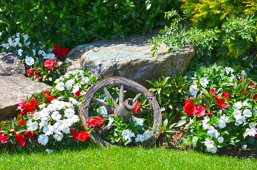 Flowers, Nature, Composition, Spring, Wooden Wheel