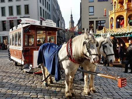 Horse Drawn Carriage, Carriage Rides, Neumarkt, Wagon