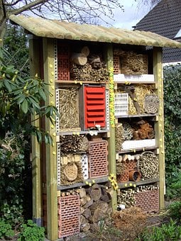 Insect House, Insect Hotel, Insect Asylum, Insect Box