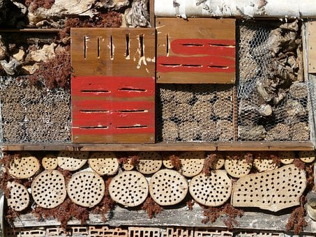 Insect Hotel, Insect House, Insect Asylum, Insect Box