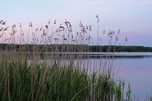 Lake, Mecklenburg Western Pomerania, Labusseee, Dusk