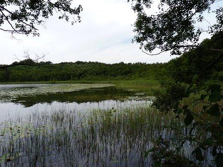 Lake, Mecklenburg, Western Pomerania, Mcpomm