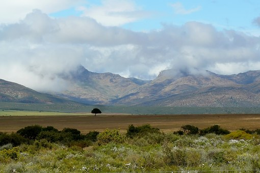 Landscape, Nature, Meadow, Field, Sky, Clouds, Rest