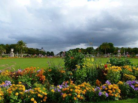 Paris, France, Jardin Du Luxembourg, Flowers, Grass