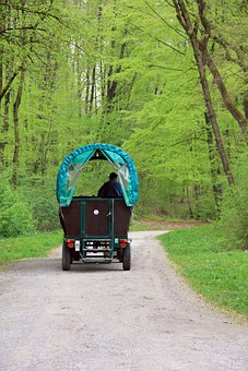 Way, Path, Road, Coach, Horse, Coachman, Drive
