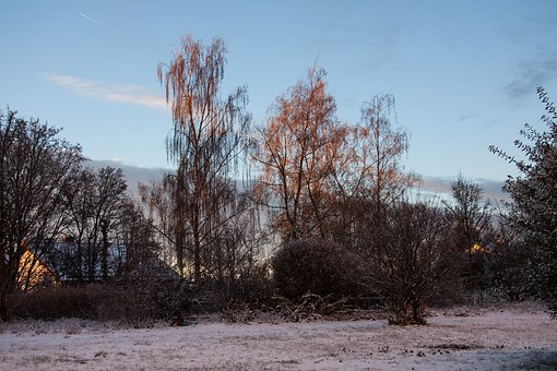 Morning, Morning Sun, Serene, Winter, Mood, New Zealand