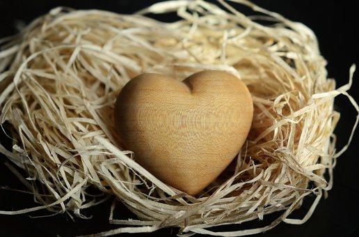 Wood Wool, Wood, Natural Materials, Light Brown