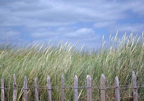 Dawlish Warren, Devon, Beach, Seaside, Coast, Dawlish