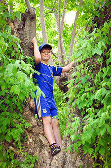 Tree, Child In A Tree, Football Shape, Football, Sports
