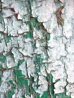 Old Wood, Painted, Texture, Green And White, Rough